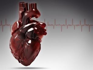Avances en la bioimpresión en 3D. Reconstrucción de un corazón.