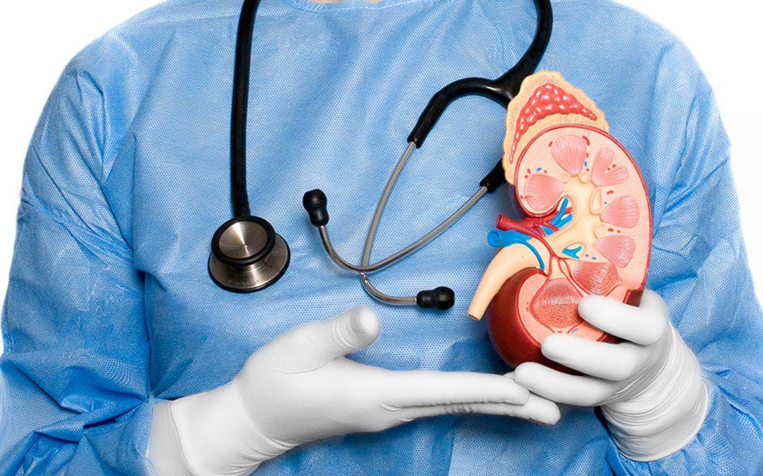 ¿Qué hace un nefrólogo?